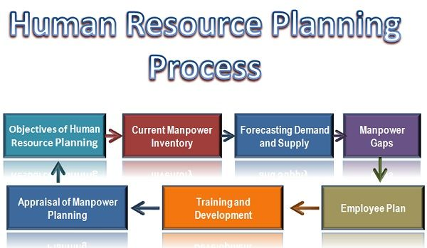 Image result for Human Resource Planning Process