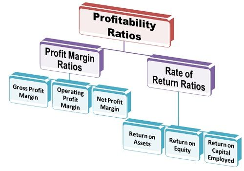 profitability ratios to measure the performance Start studying finance ch 17  what are the two ratios that measure profitability why is eva a better measure of financial performance that are accounting.