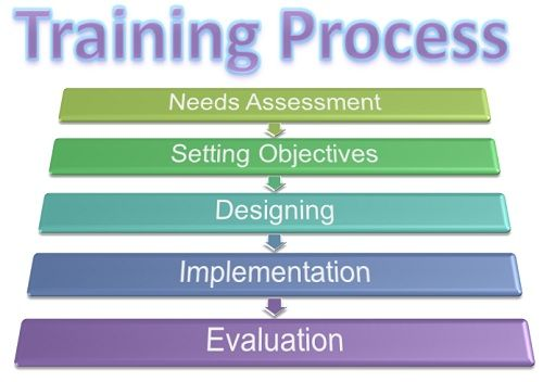 Image result for Training Process