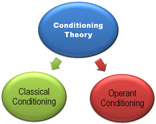 classical versus operant conditioning essay Learning technique, psychology, stimulus - classical and operant conditioning.