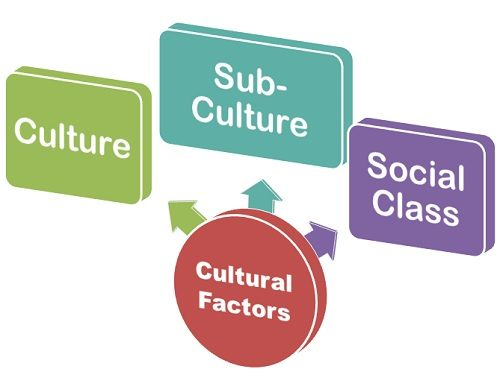 What are the factors affecting youth culture