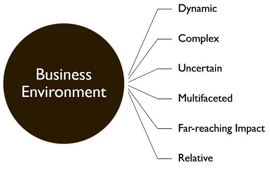 salient features of business environment