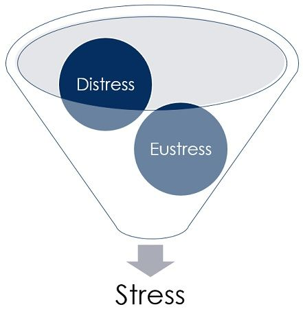 classification of stress