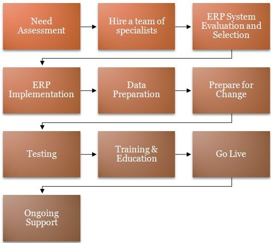Steps Involved in ERP