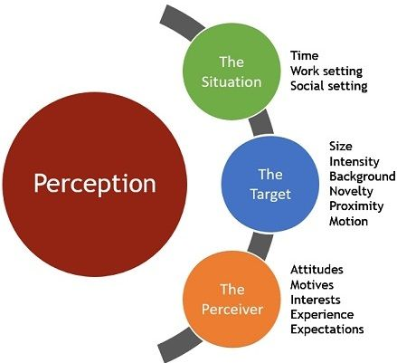 factors which affect perception