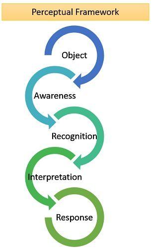 perceptual framework