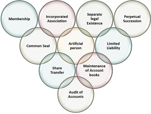 characteristics-of-company
