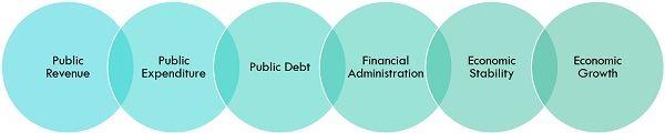 elements of public finance