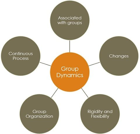 group dynamics features