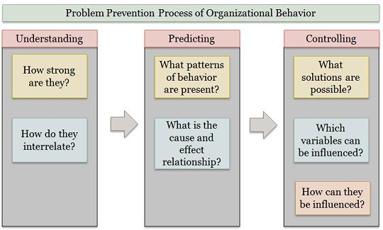 problem-prevention-process-of-organizational-behaviour