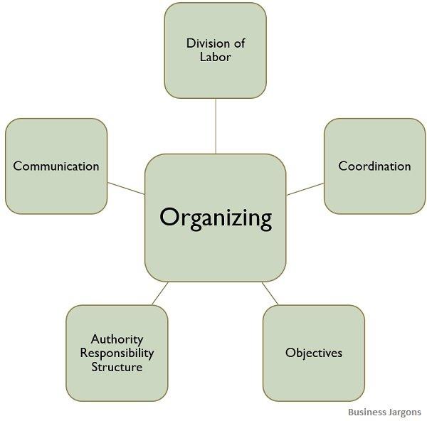 characteristics-of-organizing